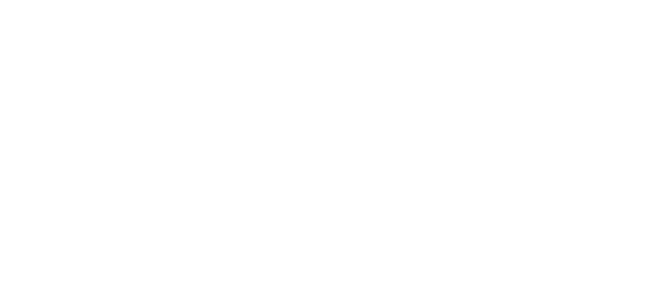 GRUPO NOROESTE EN RED