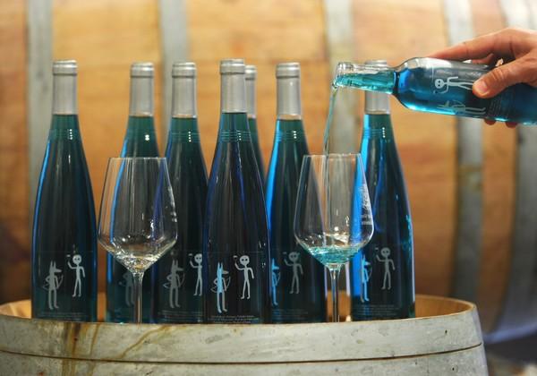 Byva Blue, el primer vino azul del Bierzo (C. Sánchez/Ical)