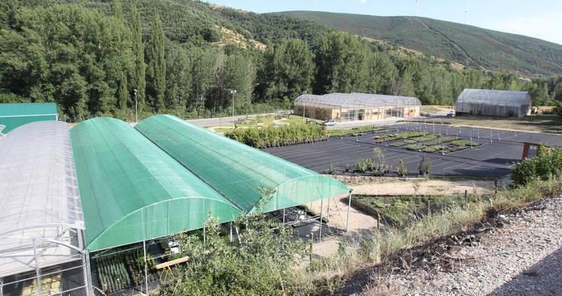 El Vivero De Ciuden En Igüeña Recibe Más De 585 000 Euros Para Dos Proyectos De Restauración Ambiental Y Paisajística