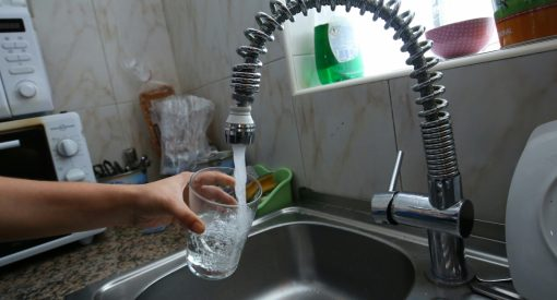 grifo agua