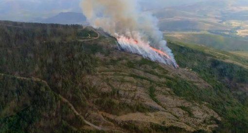 incendios forestales en el bierzo