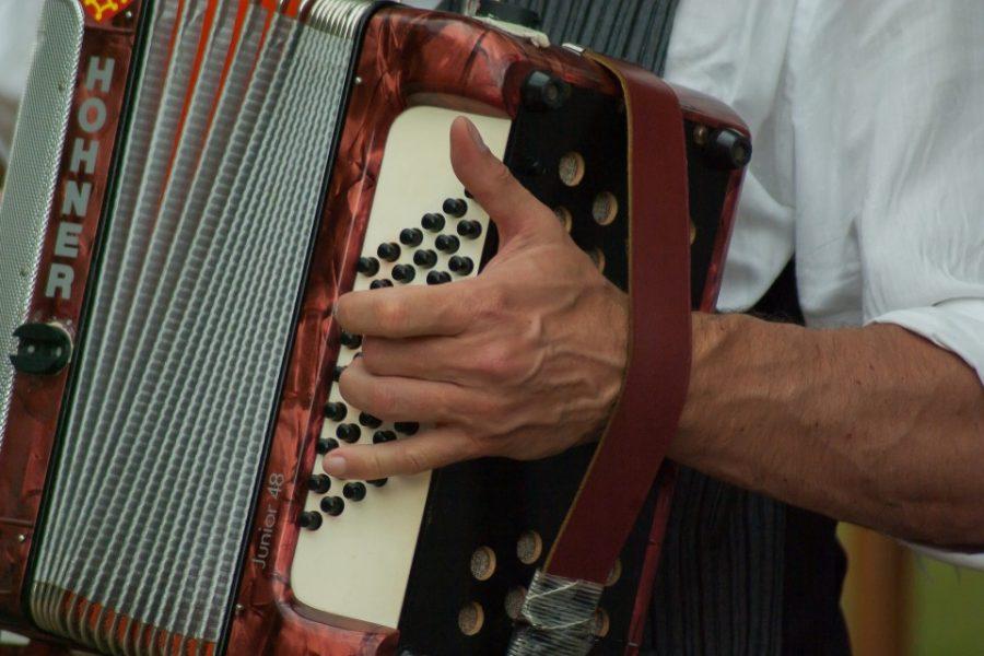 concurso de acordeon