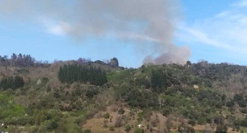 Incendio forestal en Toreno