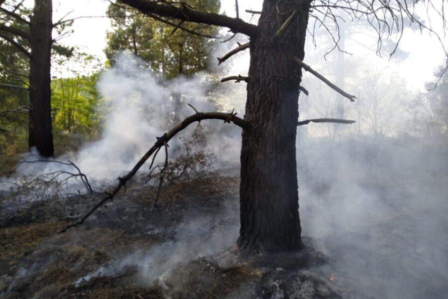 Incendio en la carretera del pantano
